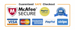 100% secured payment system